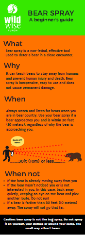 Bear spray for beginners