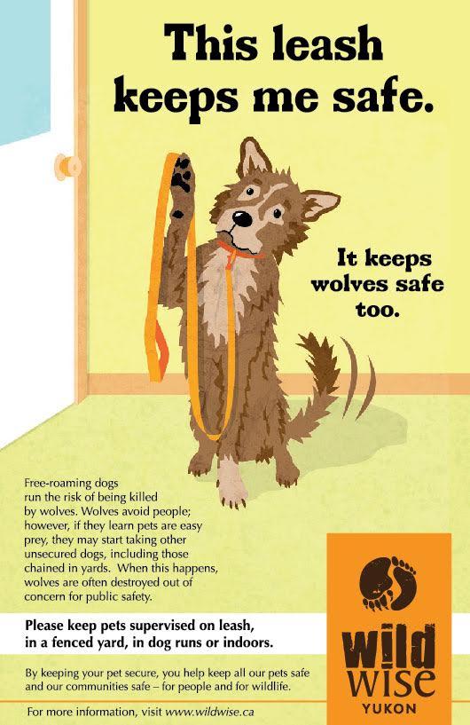 Keep Wildlife Safe